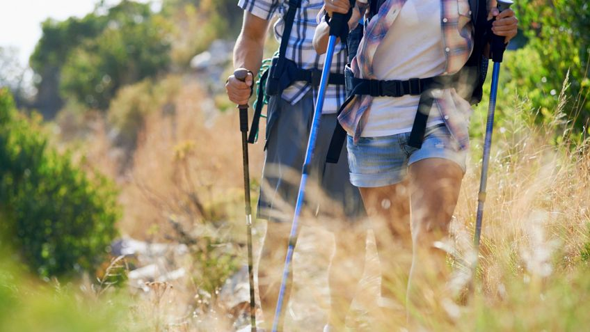 bastones para caminar monte